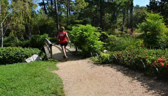 female-jogger-2832118_960_720
